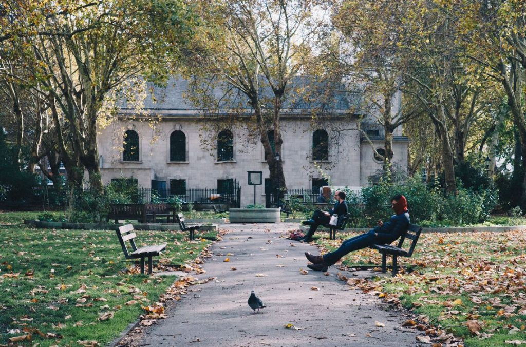 """'Pigeon with attitude', St Luke's Gardens, Aidan Taub (35–65 category). """"Taken while out and about on my lunch break in Clerkenwell."""""""